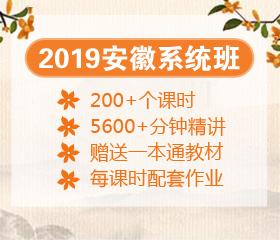 2019安徽系统班大放价