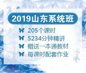 2019山东系统班大放价