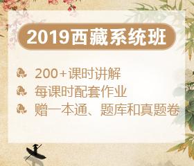 2019年西藏笔试系统班