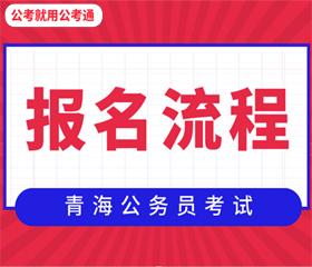 青海省考报名流程!