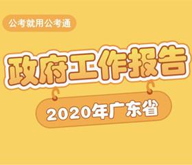 2020广东省政府工作报
