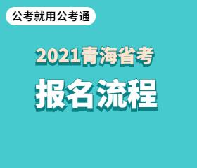 青海省考报名流程